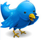 twitter bird to carry messages